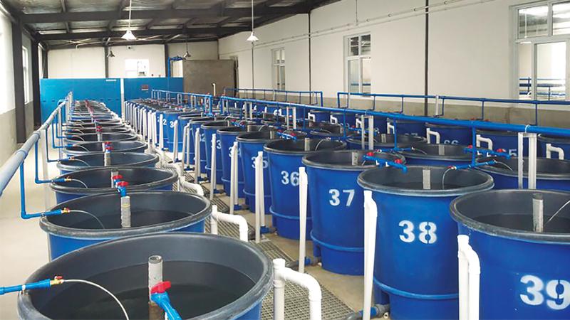 正大水产(武汉)有限公司 - 渔业生物工程项目