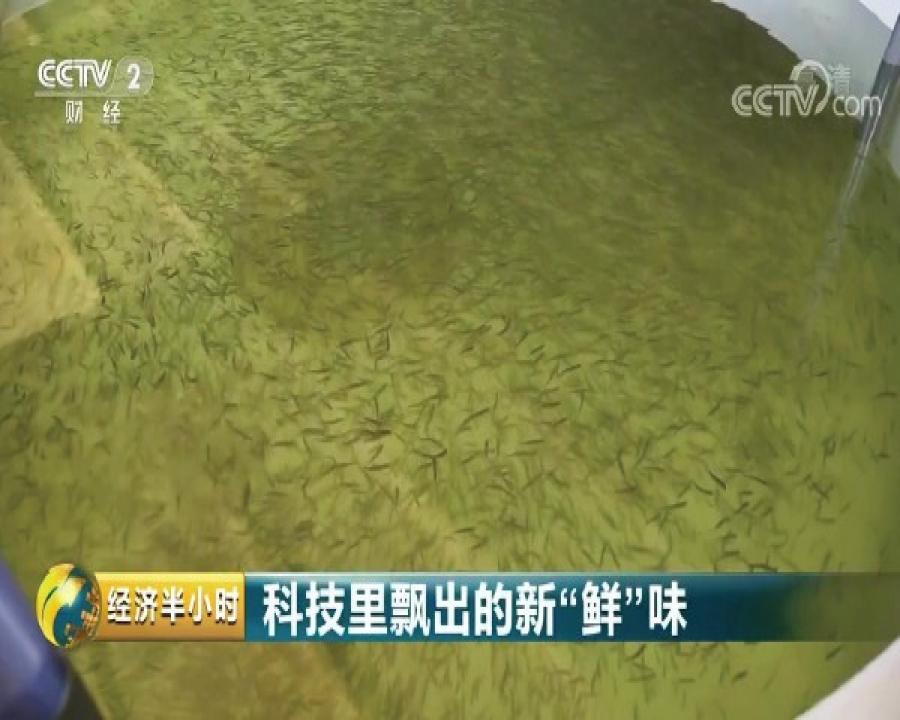 Qinghai Mingze Longyangxia Ecological Aquaculture Co., Ltd.