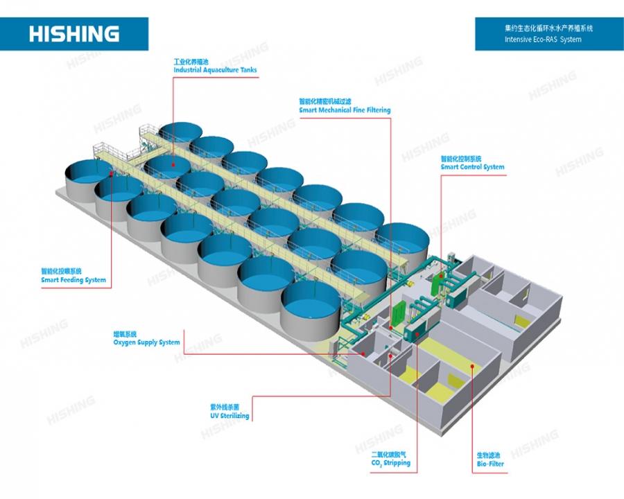 集约生态化循环水水产养殖系统