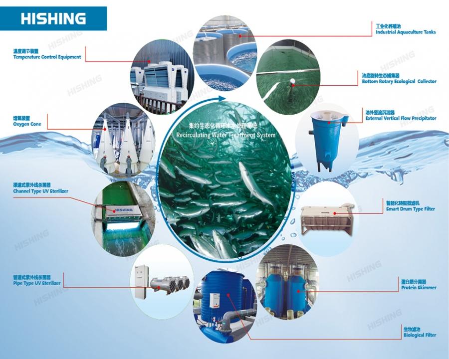 集约生态化循环水水处理系统